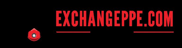 EXCHANGEPPE.COM Logo 768x205